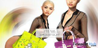 35MM Classica Bag Money & Purple Crocodile Group Gift by Vive Nine - Teleport Hub - teleporthub.com