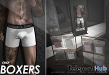 Casual Boxers March 2021 Group Gift by Kalback - Teleport Hub - teleporthub.com