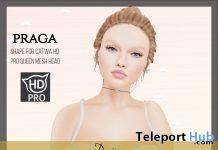 Denisse Bento Shape May 2021 Group Gift by PRAGA - Teleport Hub - teleporthub.com