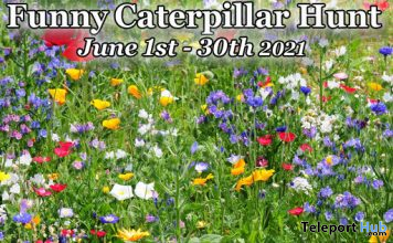 Funny Caterpillar Hunt 2021 - Teleport Hub - teleporthub.com