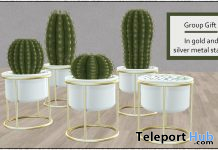 Cactus Planters May 2021 Group Gift by Careless - Teleport Hub - teleporthub.com