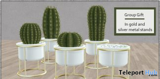 Cactus Planters May 2021 Group Gift by Careless - Teleport Hub - teleporthub.com